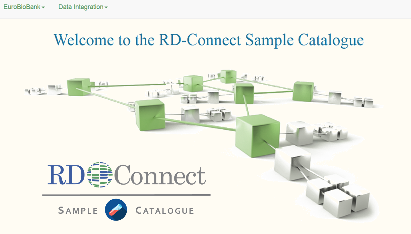 Sample Catalogue Rd Connect Home Computer Network Diagram